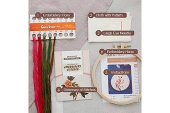 (Plum blossom) - Akacraft DIY Embroidery Starter Kit, Cotton Fibric with Stamped Pattern, 15cm Plastic Embroidery Hoop, Colour Threads, and Needles, Chinese Traditional Flowers Series-Plum Blossom