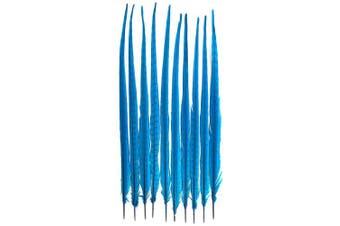 (Turquoise) - American Feathers Ringneck Pheasant Tail Feathers 60cm - 60cm Dyed Colours (Turquoise)