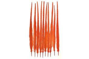 (Orange) - American Feathers Ringneck Pheasant Tail Feathers 60cm - 60cm Dyed Colours (Orange)