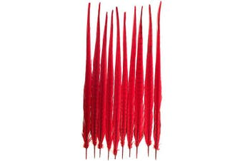 (Red) - American Feathers Ringneck Pheasant Tail Feathers 60cm - 60cm Dyed Colours (Red)