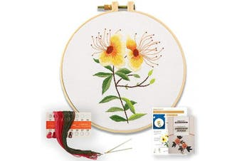 (Hypericum) - Akacraft DIY Embroidery Starter Kit, Cotton Fibric with Stamped Pattern, 15cm Plastic Embroidery Hoop, Colour Threads, and Needles, Chinese Traditional Flowers Series-Hypericum