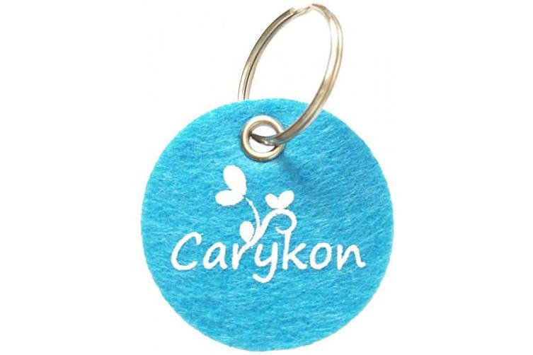 (Light Blue) - Carykon 100 PCS 30cm Iridescent Sparkly Tinsel Stems Pipe Cleaners (Light Blue)