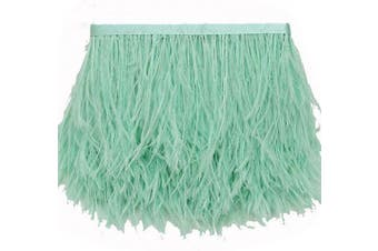 (pale-green) - ADAMAI Natural Ostrich Feathers Trims Fringe DIY Dress Sewing Crafts Costumes Decoration Pack of 10 Yards (Pale-Green)