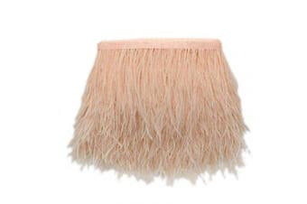 (champagne) - ADAMAI Natural Ostrich Feathers Trims Fringe DIY Dress Sewing Crafts Costumes Decoration Pack of 10 Yards (Champagne)