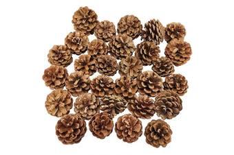 30PCS Natural Christmas Pine Cones Bulk for Craft Home Ornament Winter Holiday Home Decor Vase Bowl Filler
