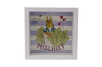 Peter Rabbit Beatrix Potter Money Box Getting into Mischeif