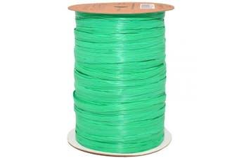 (100 yards, Kelly Green) - Morex Ribbon 100% Rayon Matte Raffia Biodegradable Ribbon, Kelly Green, 0.6cm x 100 Yd