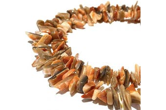 [ABCgems] Rare Orange/Grey Spiny Oyster Shell AKA Spondylus (Hand Cut from The Spikes of The Outer Shell) Tiny 4-8mm Chips Natural Mother of Pearl Healing Energy Beads