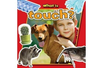 What is Touch? (Senses Close-Up)