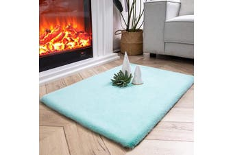 (0.6m x 0.9m Rectangle, Turquoise) - Ashler Ultra Soft Faux Rabbit Fur Chair Couch Cover Area Rug for Bedroom Floor Sofa Living Room Turquoise-Rectangle 0.6m x 0.9m