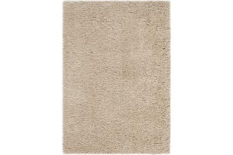 (0.6m x 0.9m, Champagne) - Safavieh Venice Shag Collection SG256 Handmade Silver Polyester Area Rug, 0.6m x 0.9m, Champagne