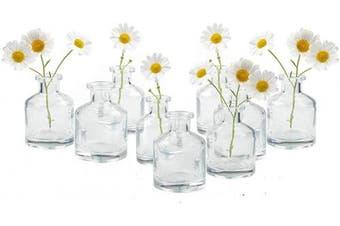 (Clear Short Bottle Bulk 10) - Chive - Loft, Set of 10 Clear Short Bottle 5.1cm Width, 7cm Tall Small Glass Flower Vases, Decorative Rustic Floral Vases for Home Decor Centrepieces, Events, Single Flower Bud Vase, Vintage Look