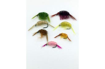 BestCity Fly Fishing Flies weighted SHRIMP X 16 sizes 10-16 UK Quality tied flies #329B