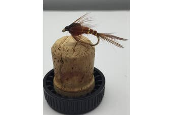 BestCity Fishing Flies PRIME collection DAMSEL NYMPH BROWN x Eight(8) Flies for trout fishing, Size 10