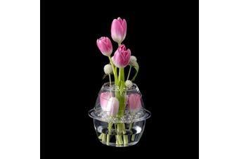(Blossom) - Amazing Abby Vase Blossom - Acrylic Vase with Flower Frog for Easy Fresh Floral Arrangement, Shatter-Proof and Ultra-Safe (16cm (D) x 15cm (H)) (Flowers NOT Included)