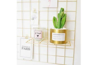 (Tray, Gold) - Set of 2 Gold Shelf for Wall Grid, Multifunction Grid Board Decor, Can be Used to Display Succulents, Cactus Plants, Artwork