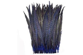 (Blue) - Celine lin 10PCS Natural Pheasant Feathers Pheasant Tails 14-16inch(35-40CM),Blue