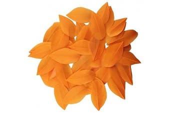 (Orange) - Celine lin 100 PCS Exquisite Leaf Goose Feathers For DIY Art,Home Party or Wedding 2-3.2inch(5-8cm),Orange