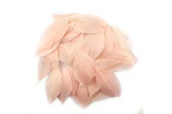 (Champagne) - Celine lin 100 PCS Exquisite Leaf Goose Feathers For DIY Art,Home Party or Wedding 2-3.2inch(5-8cm),Champagne