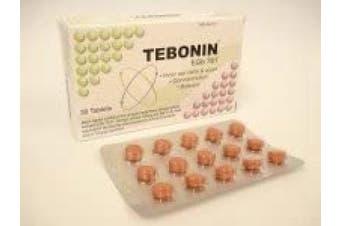 Tebonin Egb 761 (30 Tablets)
