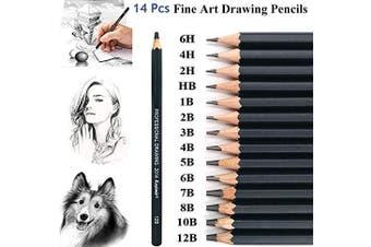 Drawing Sketch Pencil Set, KEYDI 14pcs Graphite Sketching Pencils 12B 10B 8B 7B 6B 5B 4B 3B 2B B HB 2H 4H 6H Professional Pencil Set for Students Artists Teachers.