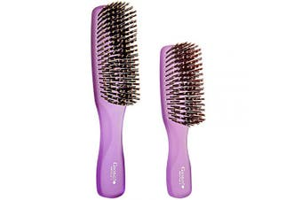 (Set, Purple) - Giorgio GION1-2PP Neon Purple Set of 2 Gentle Touch Detangler Hair Brush for Men and Women. Soft Bristles for Sensitive Scalp. Wet/Dry for all Hair Types. Scalp Massager Brush Stimulate Hair Growth