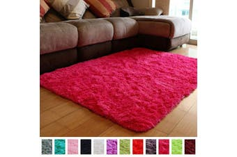 (0.6m x 0.9m, Hot Pink) - PAGISOFE Super Soft and Bright Coloured Fluffy Shag Area Rugs and Carpets, Cute Decor, Cosy Accent, Shaggy Plush Living Room Carpets Bedroom Rugs Non Slip, 2x3 Hot Pink