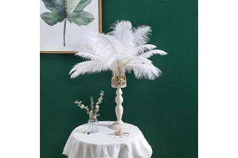 "(30cm  - 36cm  100pcs) - 12-14 inches (30~35cm) Real Natural Ostrich Feathers Great Decorations for Home Party Wedding Centrepieces White (12-14"" 100pcs)"
