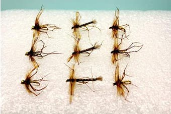 9 DADDY LONG LEGS DRY FLIES 3 DADDY'S, 3 GOLDHEADS, 3 DETACHED