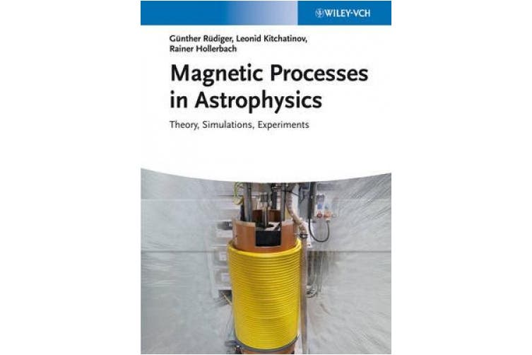 Magnetic Processes in Astrophysics: Theory, Simulations, Experiments