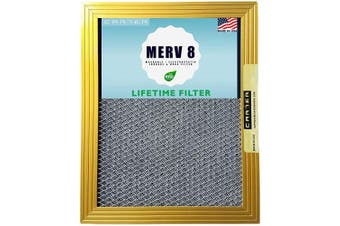 (16x25x1) - 16x25x1 CARTER | MERV 8 | Lifetime HVAC & Furnace Air Filter | Washable Electrostatic | High Dust Holding Capacity | Never buy another filter