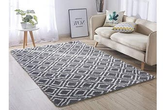 (1.2m x 1.5m, Grey & White) - ACTCUT Super Soft Indoor Modern Shag Area Silky Smooth Rugs Fluffy Anti-Skid Shaggy Area Rug Dining Living Room Carpet Comfy Bedroom Floor 4- Feet by 5- Feet (Grey & White)