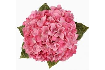 (Pink, 5 Flower Heads) - Blooming Paradise Artificial Silk Hydrangea Bouquet Fake Flowers Arrangement Home Wedding Decor,1 Bunch of 5 Flowers Fake Floral Centerpices Arrangements DIY Pink