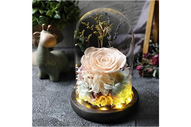 (Champagne) - Hecaty Handmade Preserved Rose 丨12cm Forever Rose with LED Light Enchanted 丨Beauty Beast Fresh Rose Lasts in Glass Dome丨Gift for Birthday, Anniversary, Valentine's Day, Christmas(Champagne)