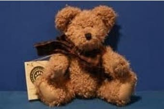 Boyds Bears Hazelnut B. Bean 23cm Tall #500100-05