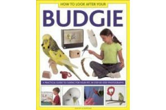How to Look After Your Budgie: A Practical Guide to Caring for Your Pet, in Step-by-step Photographs
