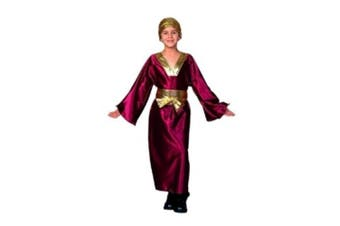 (Child Small) - RG Costumes 90183-S Wiseman Costume - Wine - Size Child Small 4-6