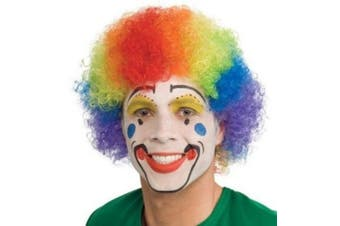 Rainbow Clown Funny Colourful Afro Halloween Costume Wig