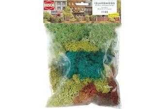 Large Pack Assortment Lichen