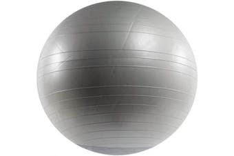 (55 cm, Silver Frost) - Power Systems VersaBall Stability Ball