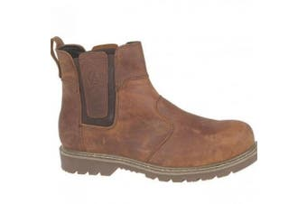 (5 UK, Brown) - Amblers Steel FS165 Safety Boot / Womens Ladies Boots / Dealers Safety