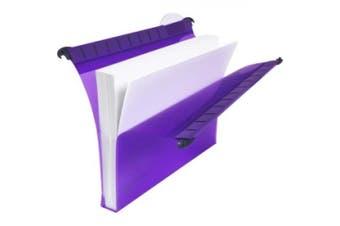 Multifile Extra Secura Foolscap Suspension File Assorted(10)