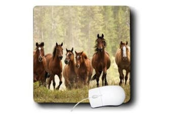 Danita Delimont - Horses - Horses cresting small hill during roundup, Montana - US27 AJE0036 - Adam Jones - Mouse Pads