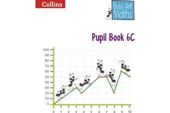 Pupil Book 6C (Busy Ant Maths) (Busy Ant Maths)