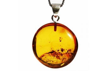 Classic Honey Baltic Amber Tablet/Circle Pendant with sterling silver hoop. Comes with lovely gift box.