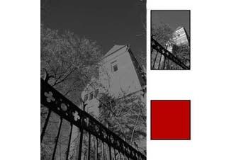 B + W 39mm #090 Glass Filter - Light Red #24