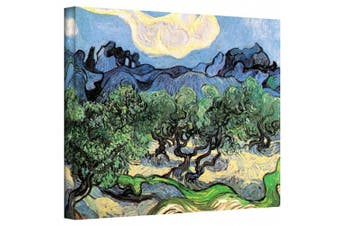 (60cm  x 80cm ) - Olive Trees Gallery Wrapped Canvas By Vincent Van Gogh