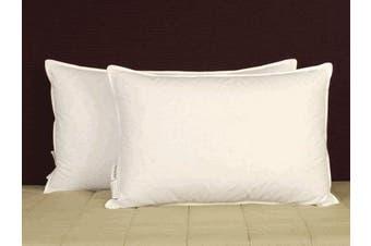 (Queen) - Pillowtex ® 75% White Duck Feather/ 25% White Duck Down Pillow