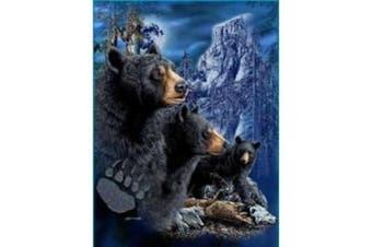New Signature Collection Queen Size 3 Black Bears Korean Mink Blanket