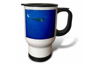 (410ml Travel Mug) - Danita Delimont - Marine Life - Hawaii, Big Island, Manta Ray marine life - US12 PSO0033 - Paul Souders - Travel Mug